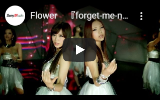 Flower|forget me not ワスレナグサ